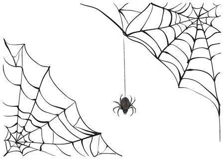 spider-on-web-clipart